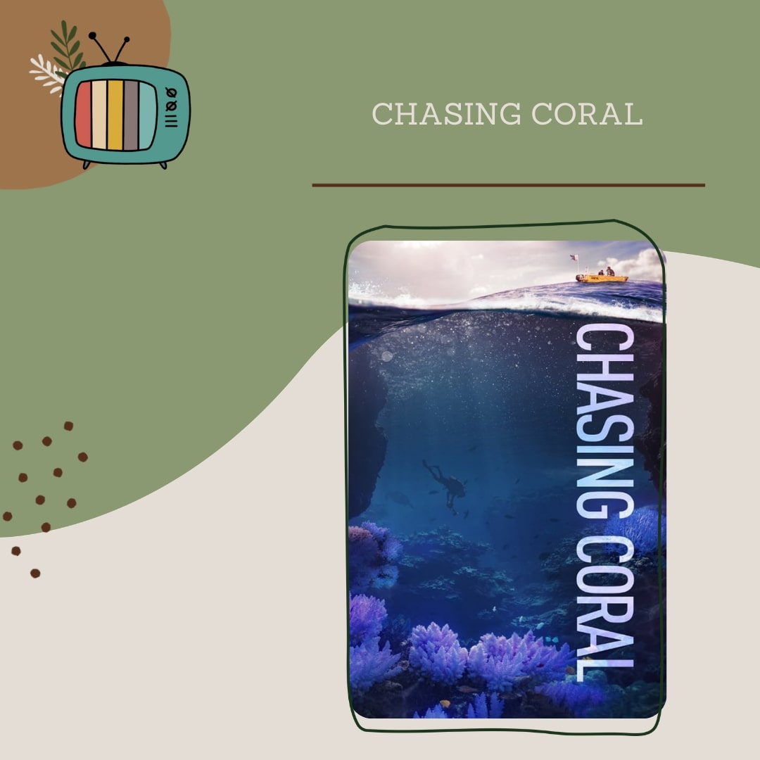 chasing-coral