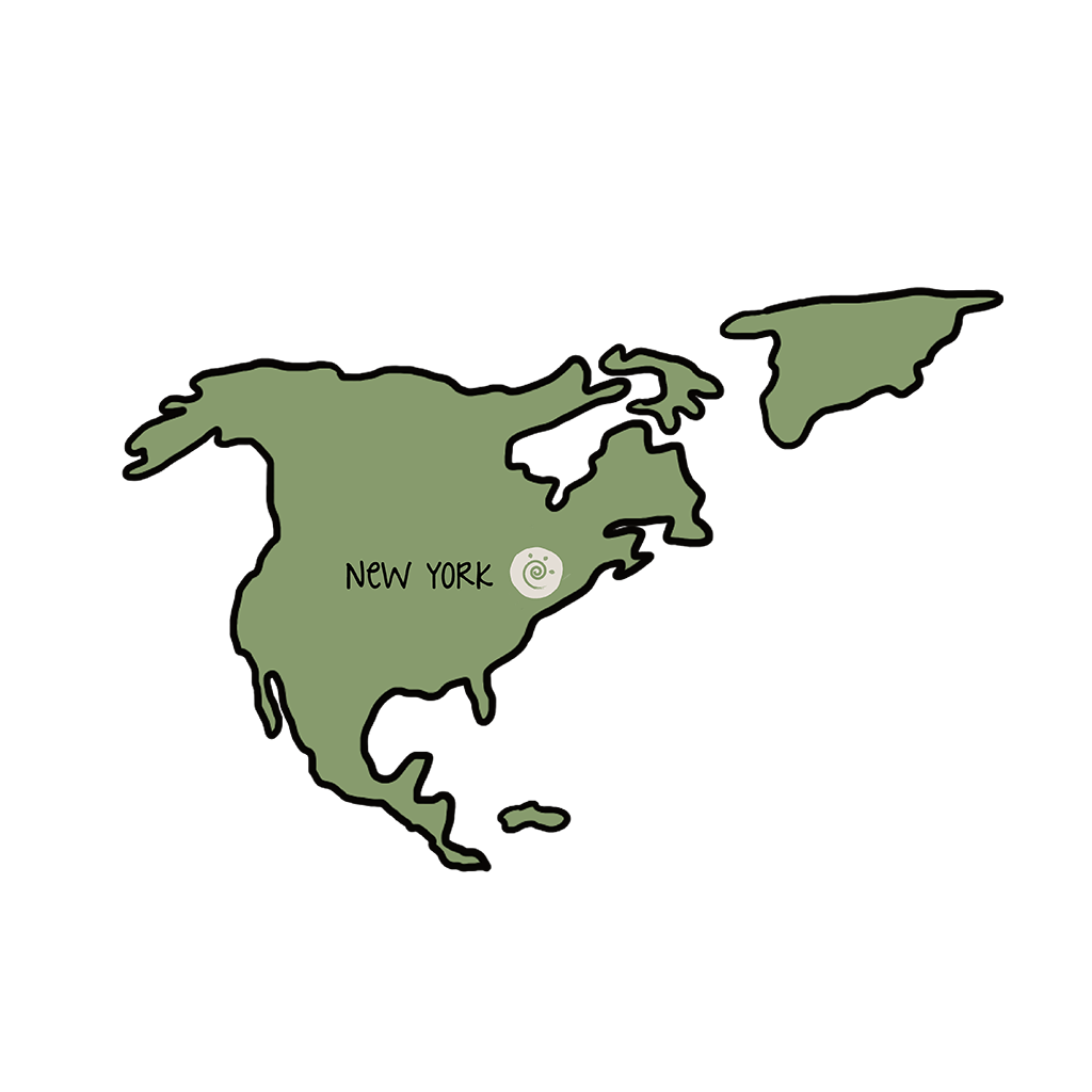 progetti-icona-new-york