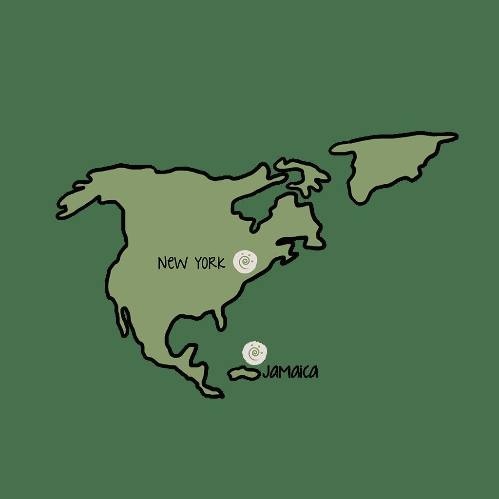 progetti-icona-nord-america
