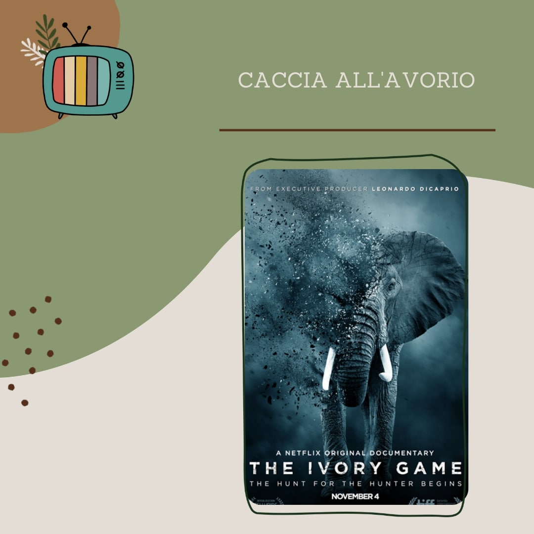 the-ivory-game